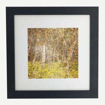 CoastalSticks-framed-wall-art-photography-art-black-frame