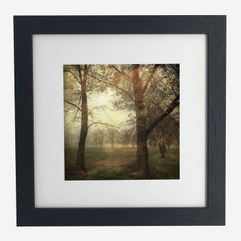 MawsonPlayingFields2-framed-wall-art-photography-art-black-frame