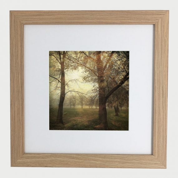 MawsonPlayingFields2-framed-wall-art-photography-art-brown-frame