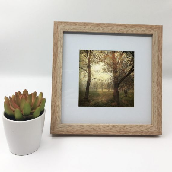 MawsonPlayingFields2-framed-wall-art-photography-art-brown-frame-situ