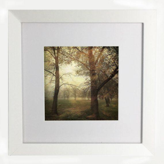 MawsonPlayingFields2-framed-wall-art-photography-art-white-frame